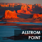alstrom_point_button_180