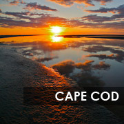cape_cod_button_180