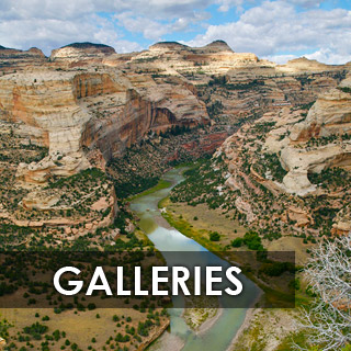 galleries_button